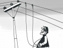 Court Orders 6 Months Imprisonment, Rs 2.20 Lakhs Civil Liability to Consumer for Power Theft